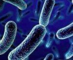 Aumenta resistencia de bacterias a antibióticos, en EUA
