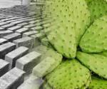 Mejoran propiedades del concreto con mucílago de nopal