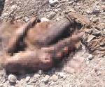 Identificaron a víctimas de levantones en Nuevo Laredo