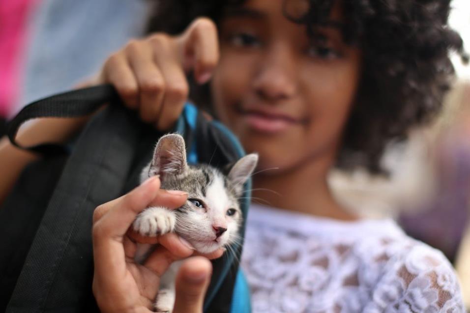 Una niña posa con gato en una marcha para reclamar una ley de protección para los animales en La Habana (Cuba), el 15 de abril de 2018. ALEJANDRO ERNESTO EFE