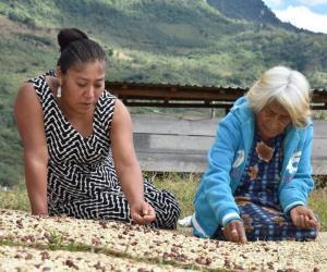 Las mujeres (indígenas) que alimentan a América Latina