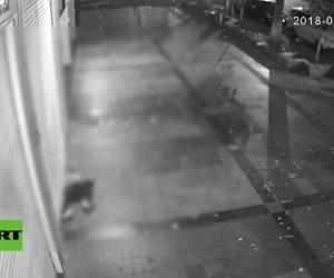 Ladrón atraviesa un estrecho hueco y roba 53.000 dólares en joyas