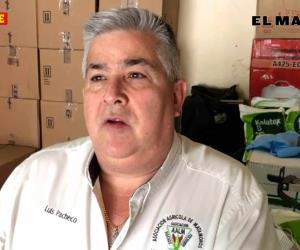 Reportan siniestradas 800 hectáreas de sorgo, en Matamoros
