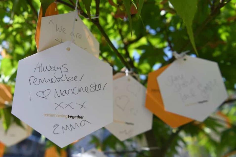 Mensajes de apoyo cuelgan del árbol de la esperanza, plantado como memorial en recuerdo a las 22 víctimas que perdieron la vida en el atentado de Manchester. PAUL ELLIS AFP