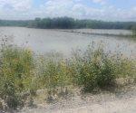 Anega río Conchos siembras de sorgo. Temen se den mayores afectaciones