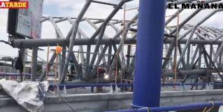 Anida en puente paloma gigantesca