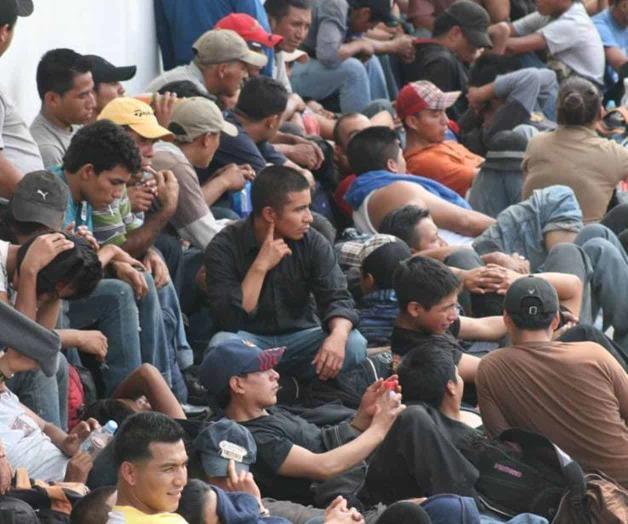 Detención récord de 113 migrantes. Exitosos operativos de la BP