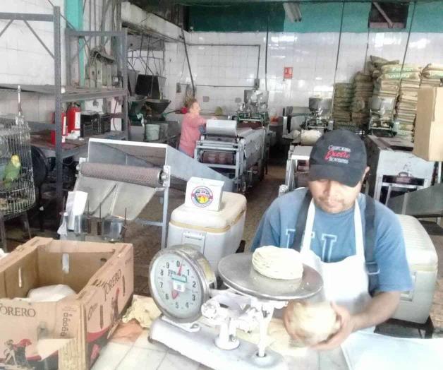 Ahogan insumos a tortilleros