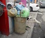 Batallan aún con la basura