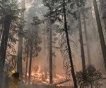 Incendio avanza hacia parque Yosemite en California