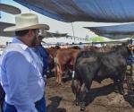 Apoyan a ganaderos