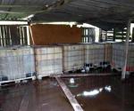 Decomisan más de 5 mil litros de huachicol en Veracruz