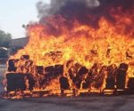 Autoridades destruyen droga en Coahuila