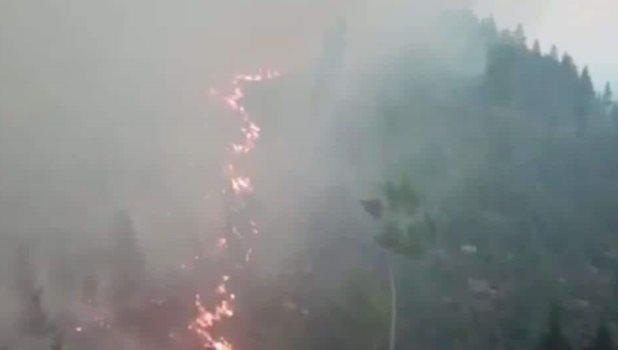 Incendios y sequías en el norte de Europa a causa de una sofocante ola de calor