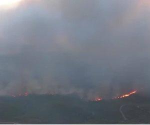 Grecia: Aumenta a 80 las víctimas de los incendios forestales