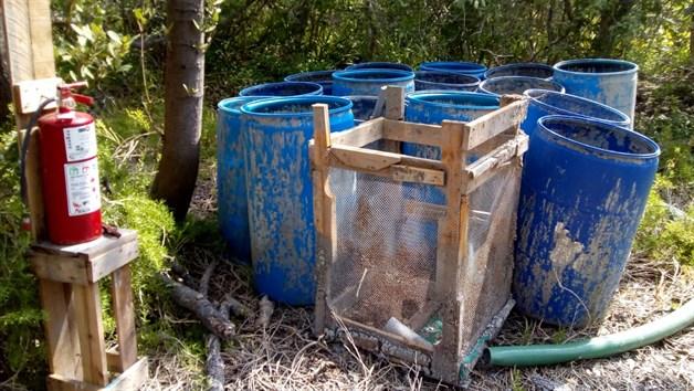ALTAMIRA: Ecocidio en laguna de San Andrés