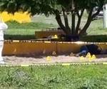 Seis muertos en jornada violenta en Guanajuato