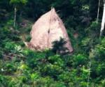 Drones captan tribu aislada en la Amazonia