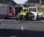 17 heridos tras choque de un microbús en España