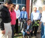 Contribuyen al entorno ecológico y el cuidado del medio ambiente