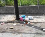 Dejan basura por todos lados