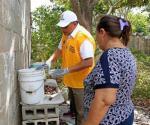 Ribereña, libre del dengue