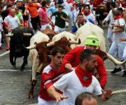 San Fermín 2019: Segundo encierro deja tres heridos