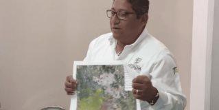 Detallan proyecto Pluvial