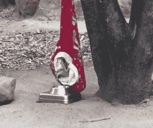 Kía, cría de canguro del zoo de Guadalajara