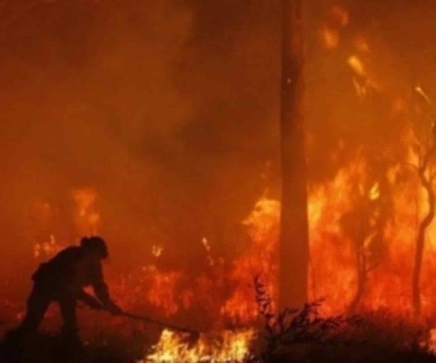 Incendios arrasan con más de un millón de hectáreas en Australia