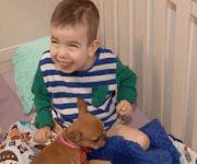Mascotas como terapia para niños enfermos