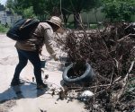 Firme combate al dengue