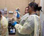 Subsidian a la Sociedad de Animales Palm Valley