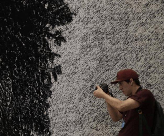 La UNAM anuncia nuevos cursos de arte y fotografía gratis online