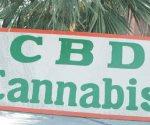 Expiden licencias para la venta de cannabis