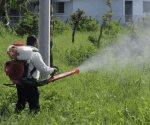Aumenta dengue en la entidad