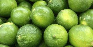Se disparan precio de limón y aguacate, kilo alcanza casi $50 pesos y aguacate los $60 pesos