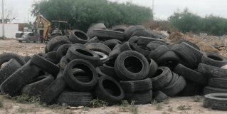 Limpia Ayuntamiento predio invadido de basura