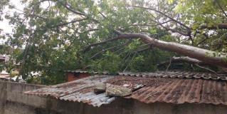 Ocasiona frente frío destrozos en el sur de Tamaulipas